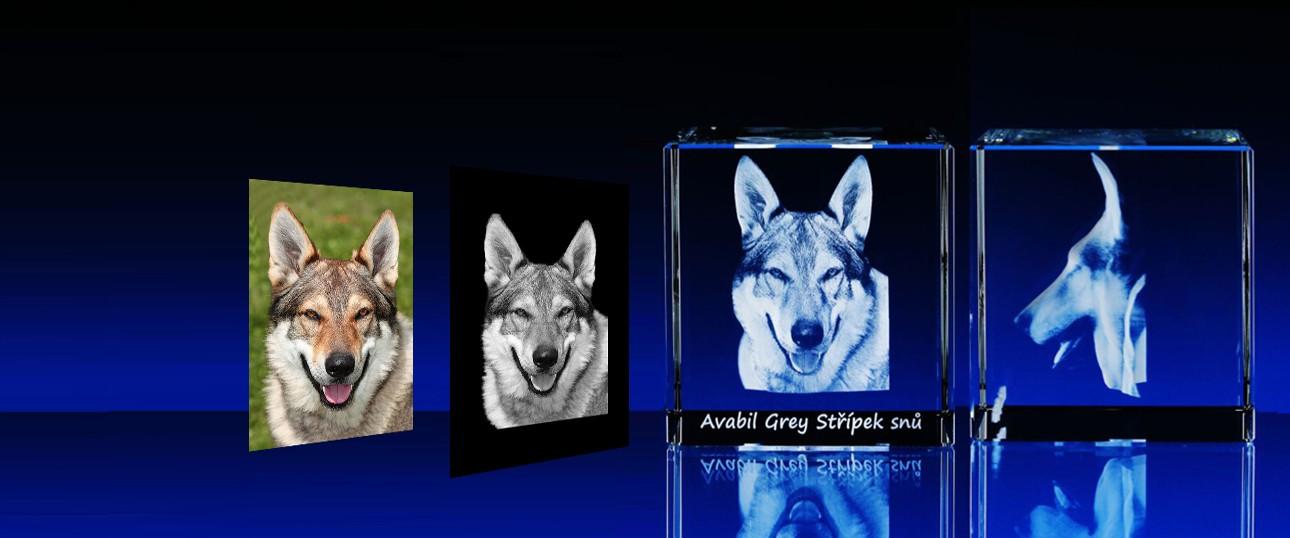 3D portréty lidí a zvířat